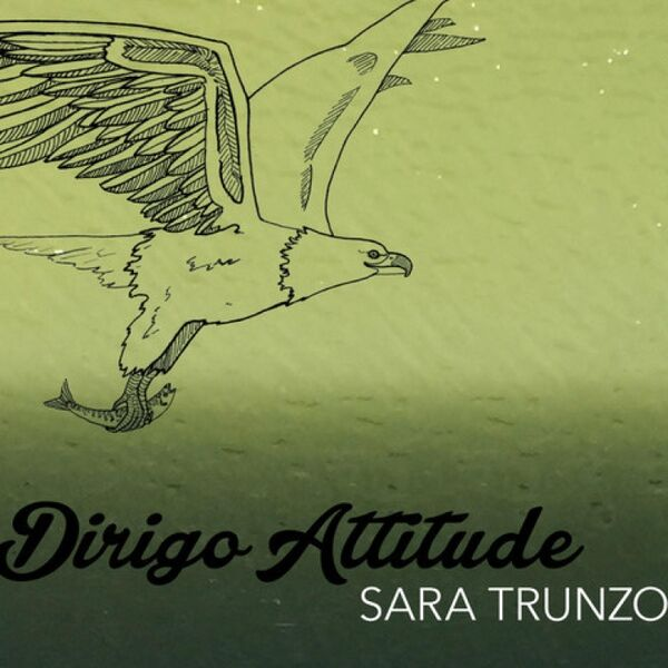 Cover art for Dirigo Attitude